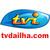 TV DA ILHA .COM