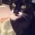 Val <Camano Cat Lady>