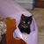 Lulu<3 (like kittens Im directionally challenged)