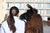 Long Island Livestock Company (Tabbethia Haubold)