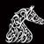 Sharjah Arabian horse show