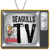 Seagulls TV