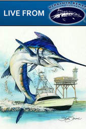 2012 Virginia Beach Billfish Tournament - PointClickFish.com Live Tournament Coverage