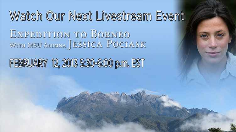 livestream cover image for Expedition to Borneo