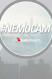 #NemoCam - Blizzard Warning in NYC