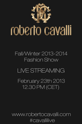 Roberto Cavalli Fall/Winter 2013 Fashion Show
