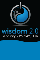 Wisdom 2.0 2013