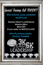 What is Silver,Leads,Leadership, 3k,6k?