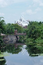Animal Kingdom's 15th Anniversary