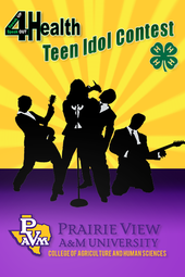2013 Youth Leadership Lab 4-H Teen Idol Contest