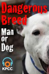 Dangerous Breed