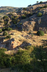 Traditions and Transitions: 10,000 Years of Life on Island of Cyprus