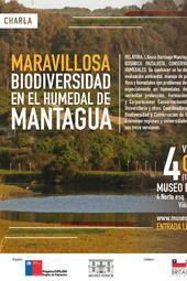"""Charla """"Maravillosa biodiversidad en el humedal de Mantagua"""""""