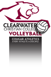 VB v. Florida College