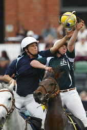 National Horseball Championships