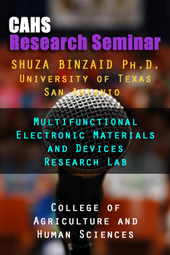 Research Seminar IV