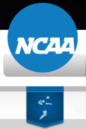 NCAA III Volleyball Semifinals Nov.15