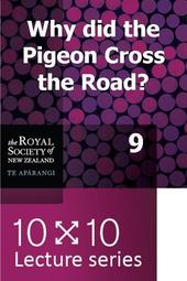 10x10: Why did the pigeon cross the road?