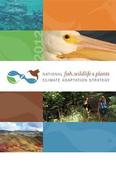 Climate Adaptation Strategy