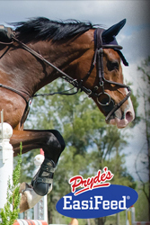 Pryde's EasiFeeds Shepparton World Cup 2013
