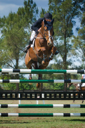 2013 Wodonga Showjumping World Cup