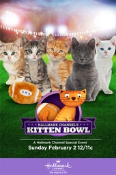 Kitten Bowl Training Camp: Kitten Cam
