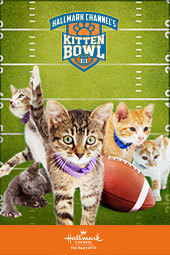 Kitten Bowl III Training Camp: Kitten Cam