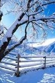 Jan -7 Jewish Snow