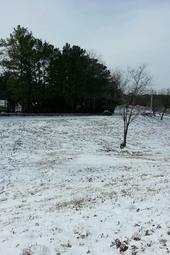 Atlanta Iceocolypse!