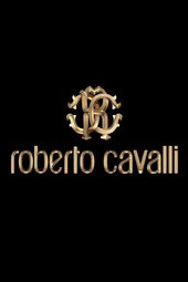 Roberto Cavalli Fall Winter 2014/15 Fashion Show