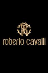 Roberto Cavalli Fall Winter 2014/15 Fashion Show