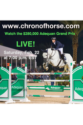 $280,000 Adequan CSI 4* Grand Prix