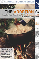 The Adoption Gap