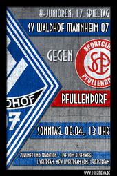 U19: SV Waldhof - SC Pfullendorf