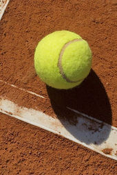 Fayez Sarofim & Co. U.S. Men's Clay Court Championship - Court 3