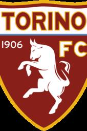 100 Anni Toro calcio 1906-2006