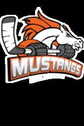 AIHL: Adrenaline at MOAT Melbourne Mustangs