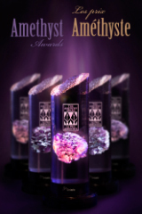 2014 Amethyst Awards