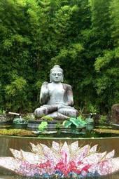 Ego and Awakening - Satsang & Deeksha