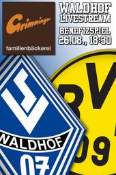 Benefizspiel: SV Waldhof - Borussia Dortmund