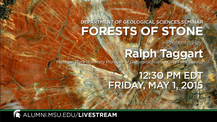 livestream cover image for Ralph Taggart  |  Forests of Stone