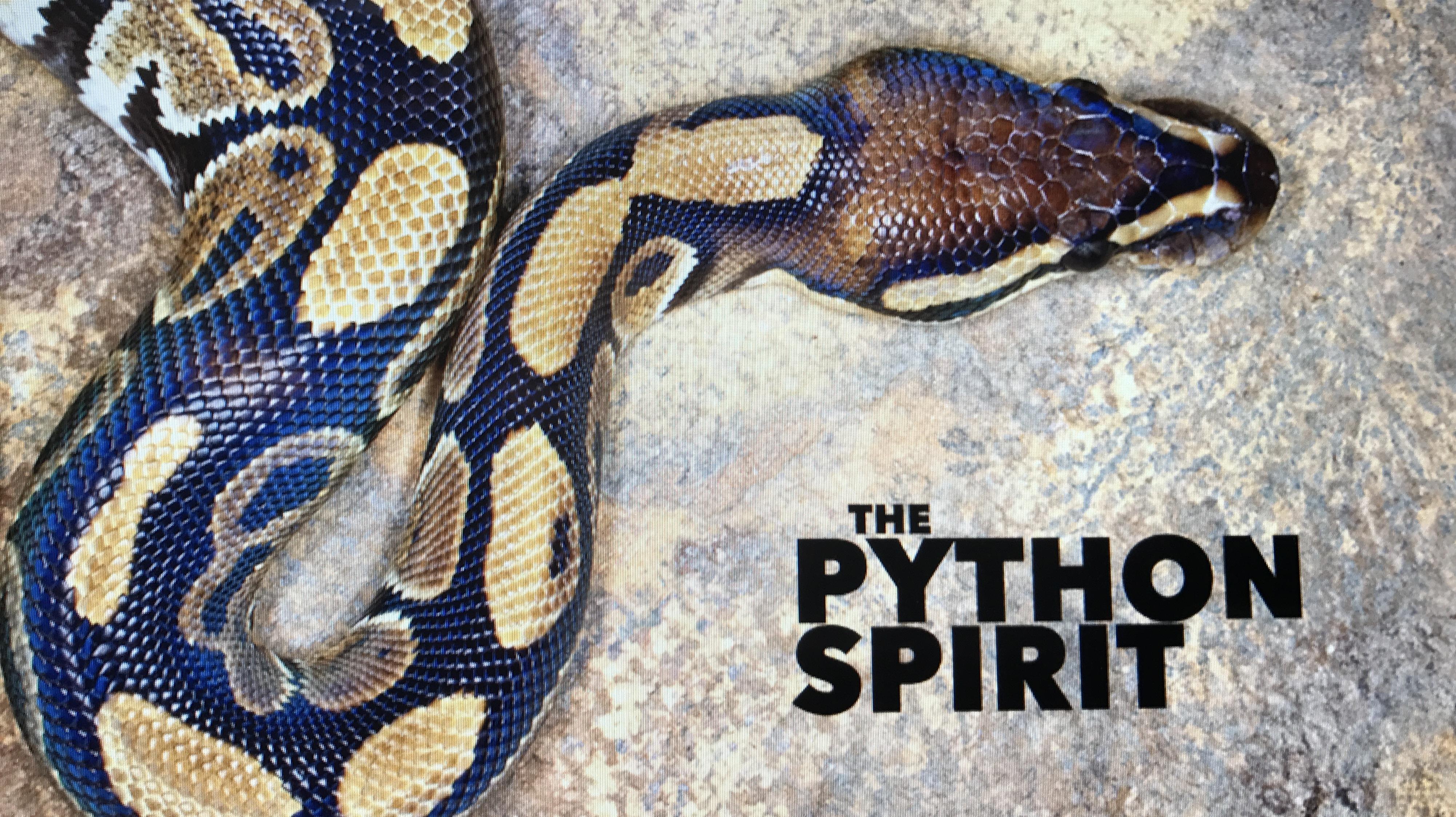 Image result for Python spirit