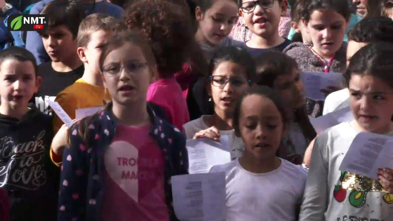 Dia 14 - Varrer dos Armários das Escolas nas Festas de Santo Amaro  TV HD (2018)