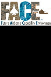 Future Ariborne Capability Environment (FACE™): Ask the Experts