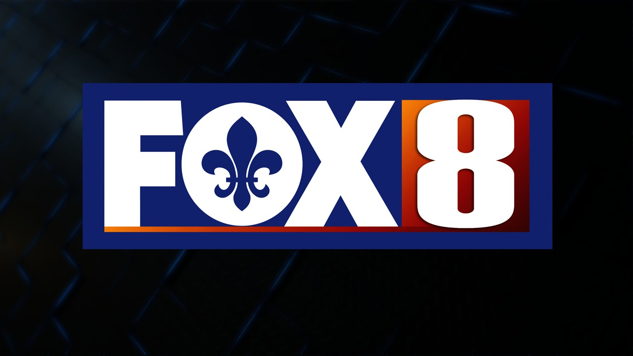Louisiana watch travel case