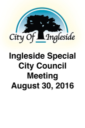 Special City Council Meeting - August 30, 2016