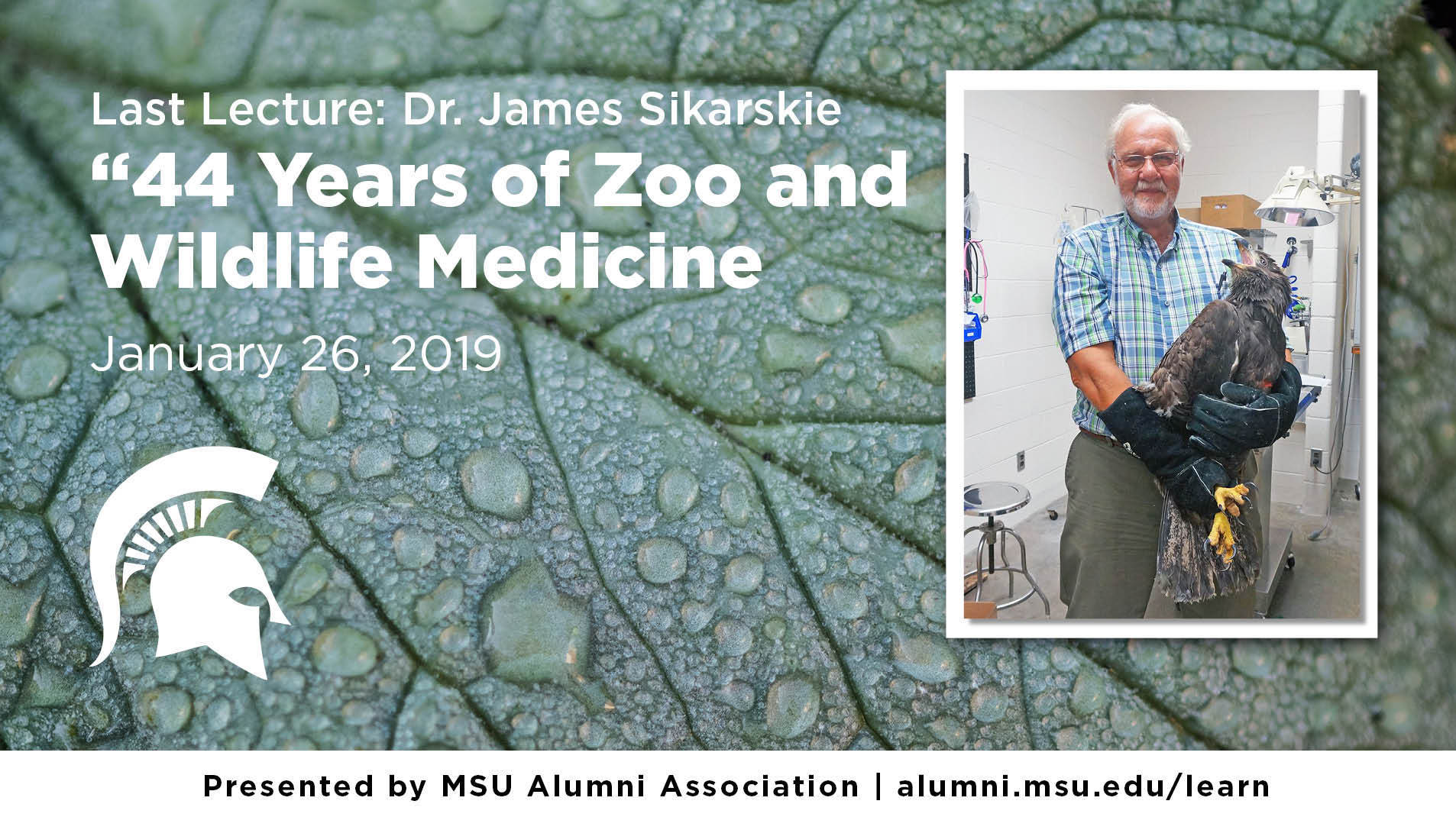"livestream cover image for Last Lecture | Dr. James Sikarskie - ""44 Years of Zoo and Wildlife Medicine and Management at MSU CVM."""