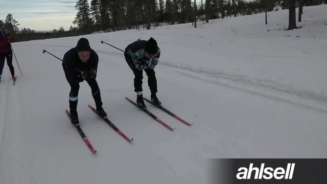Hans & Petter – En stilstudie!