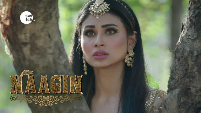 EP29 - Shivangi states that she will bring the Naagmani back