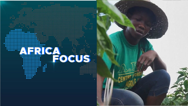 Africa Focus: Learning new farming techniques in Central African Republic
